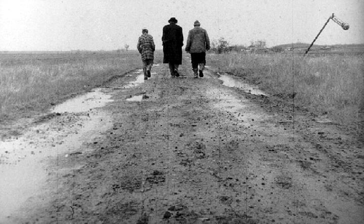 匈牙利平原上的三部曲──淺談貝拉塔爾